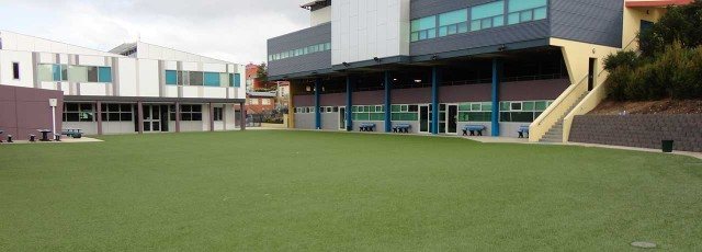 Synthetic Grass Tasmania multi sport synthetic futsal field